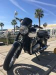 Bonneville T100/T120 (2002/19) Dart Piranha Fly Screen Triumph T120 (2016+)  Midnight Tint